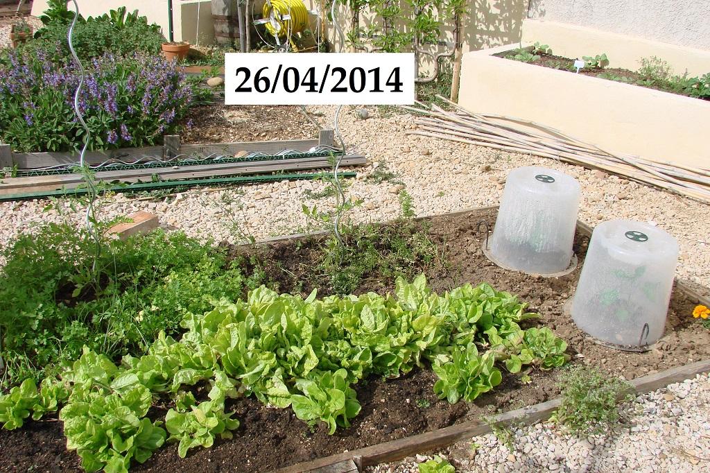 Petit Rectangle saison 2014