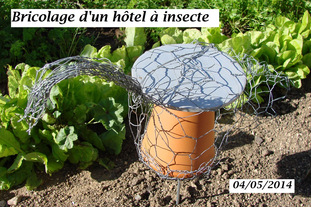 Bricolage hôtel à insectes