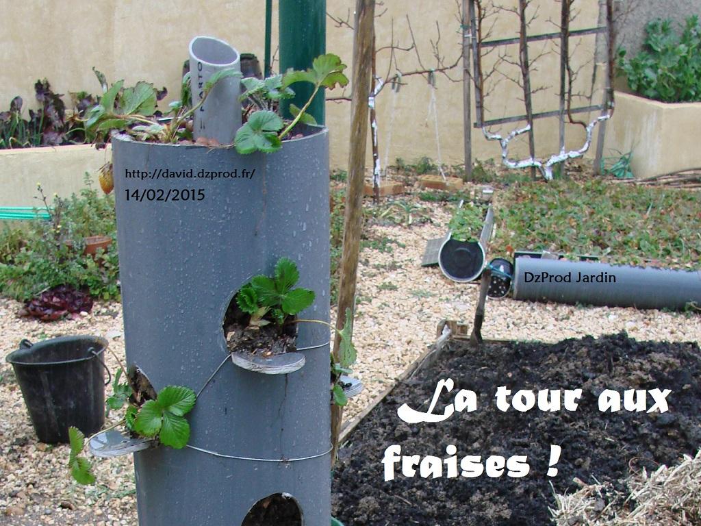 Construction support pour fraisiers, tour aux fraises, jardin vertical
