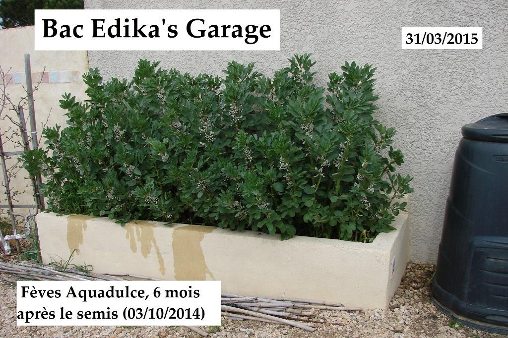Bac Edika Garage : Saison 2015