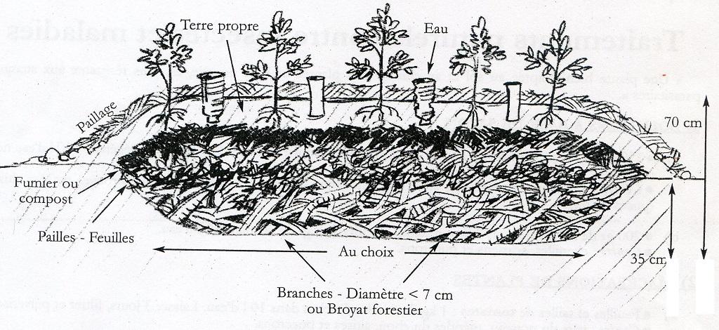 Schéma de la butte en permaculture