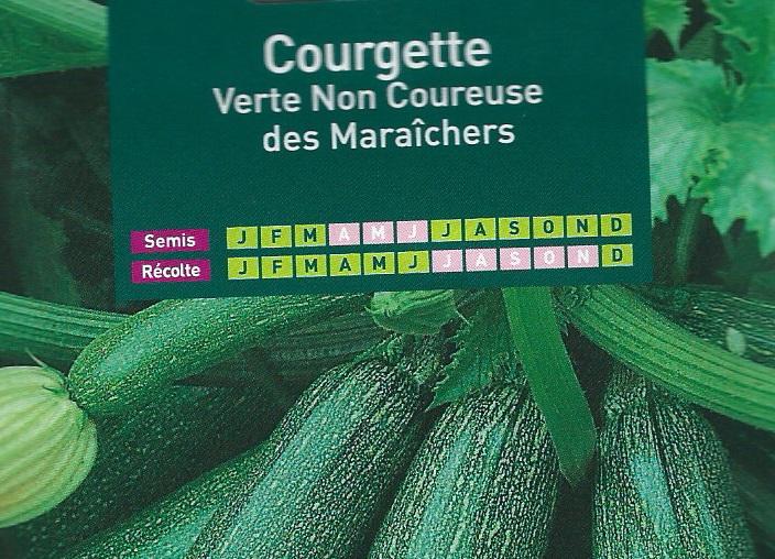 Courgette Verte Non Coureuse des Maraîchers