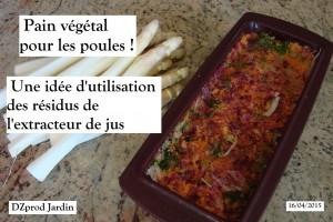 Pain végétal avec les résidus Extracteur de jus