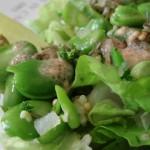 Macro salade de laitue et fève au 07-05-2015