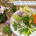 Salade de pourpier du premier mai 01-05-2015