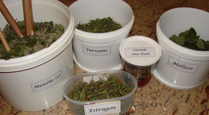 Contenant de récup pour mes récoltes aromatiques et tisanes futures