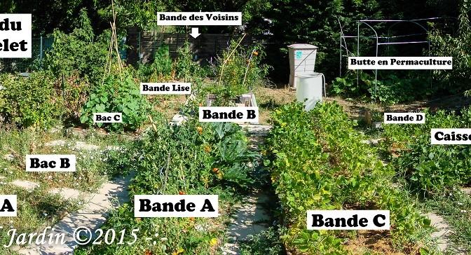 Vue d'ensemble du Jardin du Loucastarelet : Saison 2015