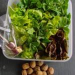 La récolte de salade - DZprod Jardin - 14 mars 2016