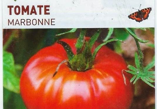 Tomate Marbonne (Fruit Charnu et parfumé)