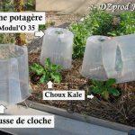 cloche-potagere-et-rehausse-dzprod-jardin