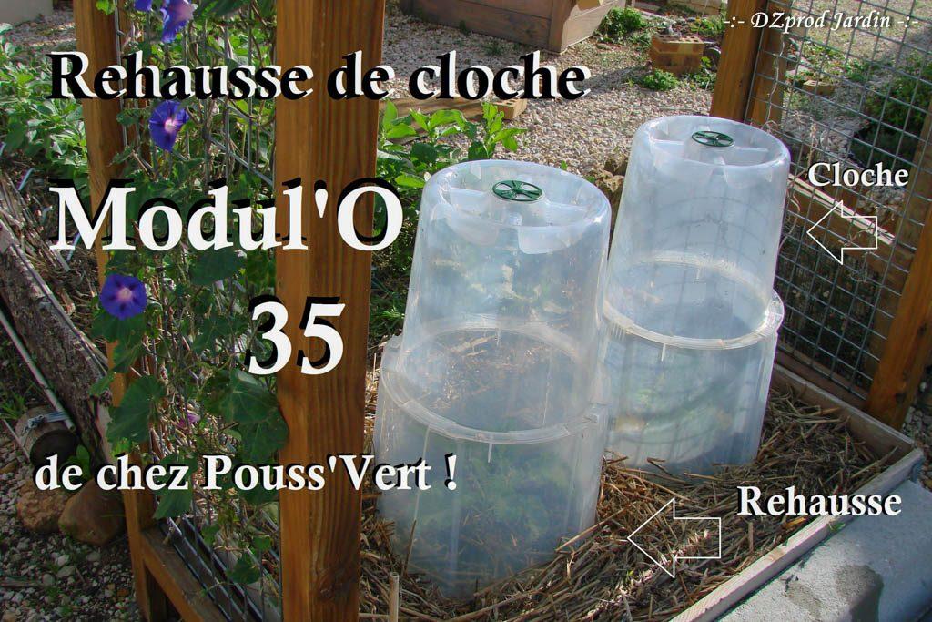 rehausse-de-cloche-pouss-vert-dzprod-jardin-02-novembre-2016