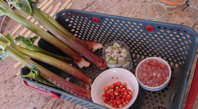 Tarte rhubarbe et fraises des bois