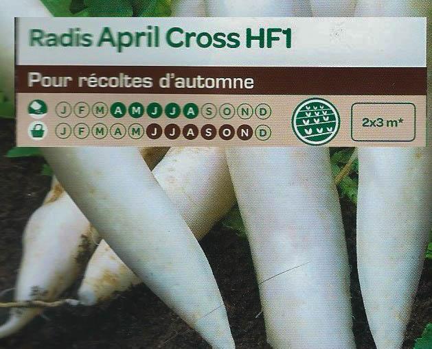 Radis April Cross HF1