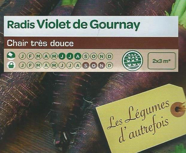 Radis Violet de Gournay