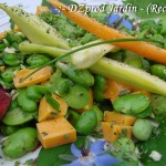 Macro Salade Fève - DZprod Jardin - 10 juin 2016