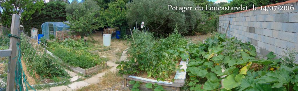 Panorama - Jardin DZprod du Loucascarelet - 14 juillet 2016