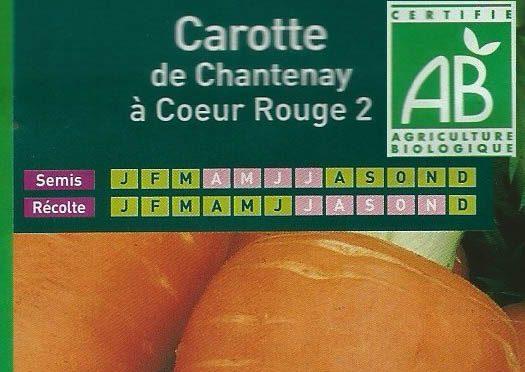 Carotte de Chantenay à coeur Rouge 2
