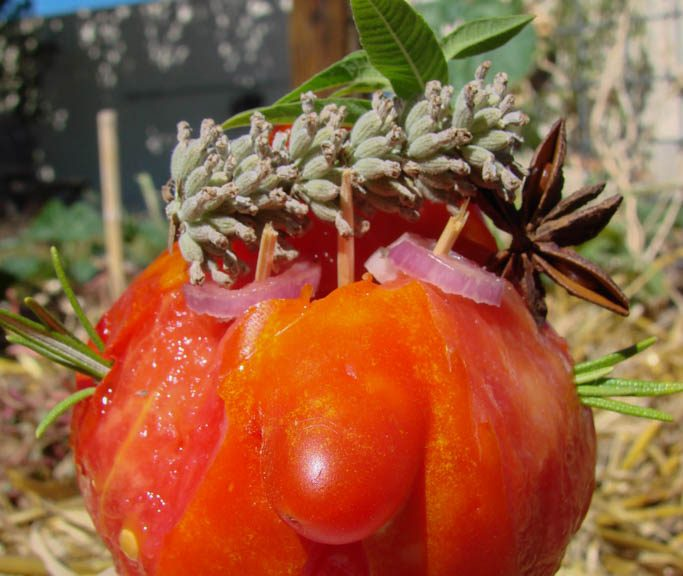 mister-tomato-head-the-gardener-dzprod-jardin-02-septembre-2016