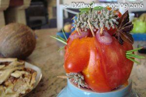 mister-tomate-dans-la-cuisine-dzprod-jardin-02-septembre-2016