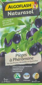 Piège à phéromone - ver des prunes mirabelles et quetsches - carpocapse - DZprod Jardin