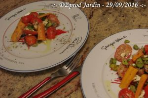 salade-a-la-marocaine-dzprod-jardin-29-septembre-2016