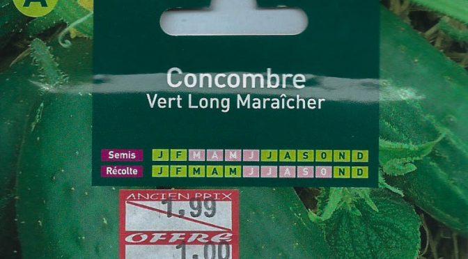 Concombre Vert Long Maraîcher