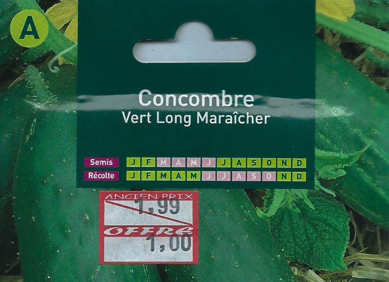 concombre-vert-long-maraicher