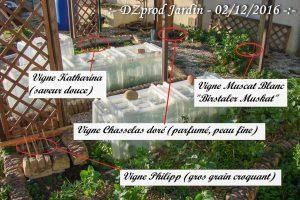 emplacement-des-vignes-dzprod-jardin-02-decembre-2016