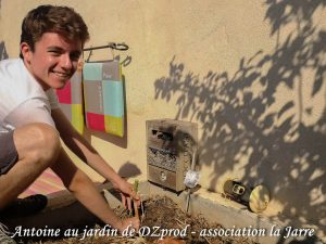 Antoine transplante les échalote Elisor - DZprod Jardin