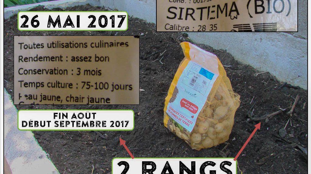Bande I Murale - PDT Sirtema - 26-05-2017