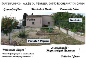 Jardin Urbain - allée du Pébrier - Rochefort du Gard - au 02 juin 2017 - n1