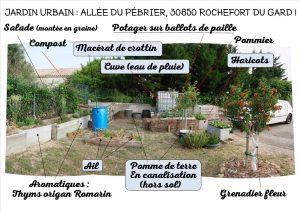 Jardin Urbain - allée du Pébrier - Rochefort du Gard - au 02 juin 2017 - n2