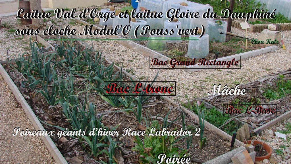 L-tronc - Grand Rectangle au 08-02-2017