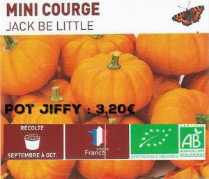Mini courge jack be little - botanic® - dzprod jardin