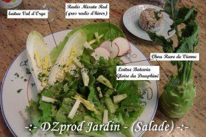 Salade DZprod Jardin du 25-12-2016