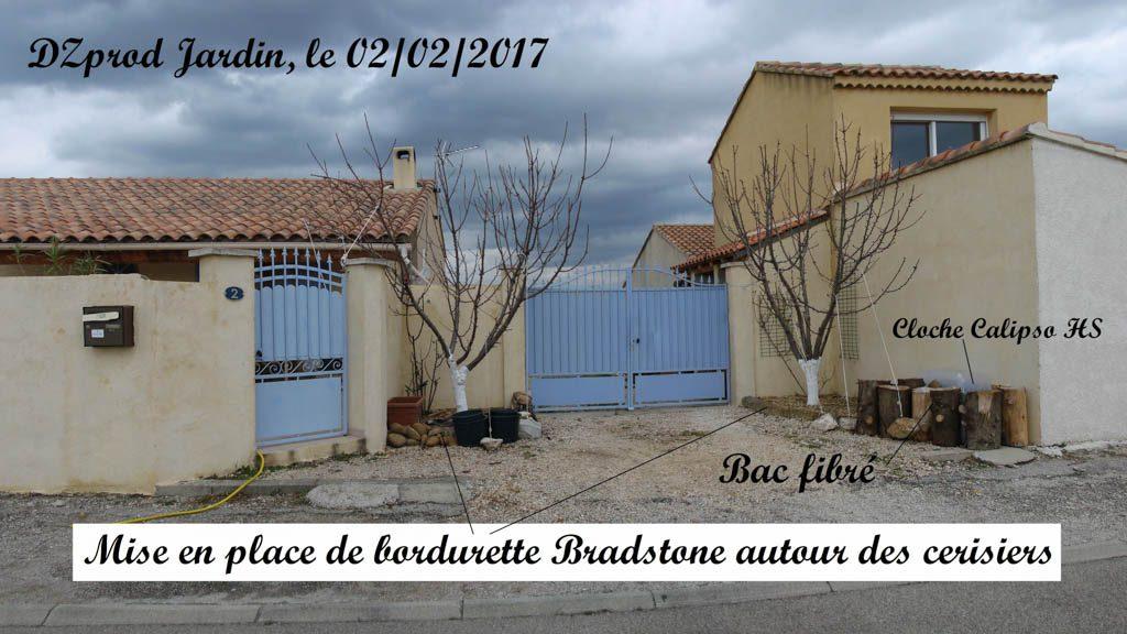 Les cerisiers - panorama - Bradstone - 02-02-2017