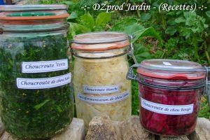 Choucroutes Viva Italia - DZprod recette - lactofermentation