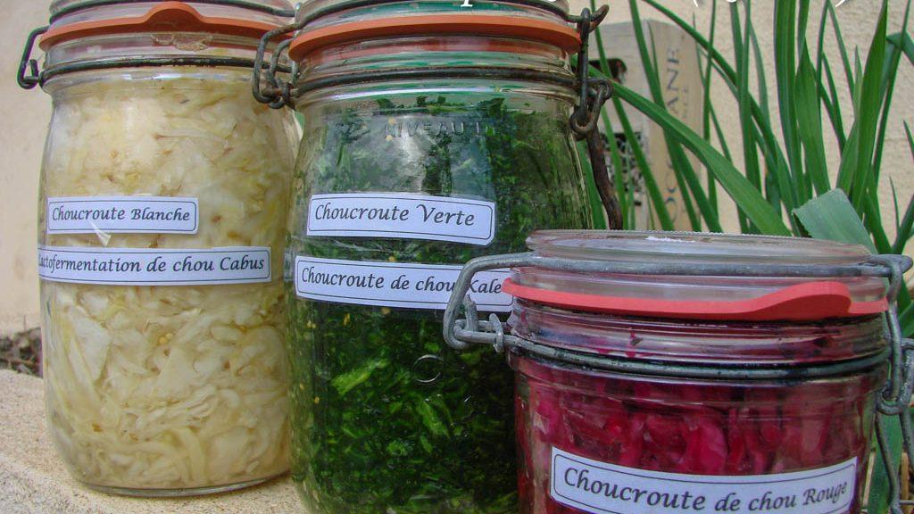 Choux fermentés - cabus - Kale -rouge (Atelier cuicine Asso La Jarre)