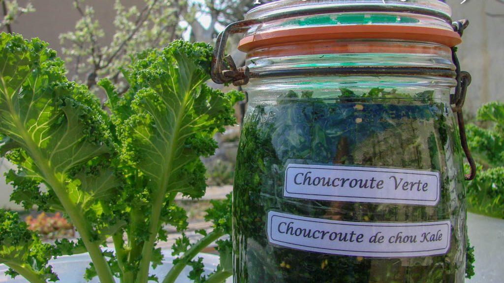 La choucroute verte - Association La Jarre (Atelier cuisine)