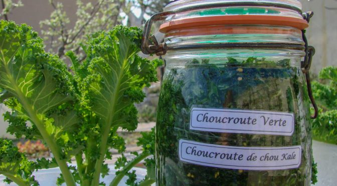 La choucroute verte – (Atelier de cuisine)