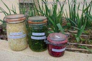 Lactofermentation - les 3 choux - DZprod recette
