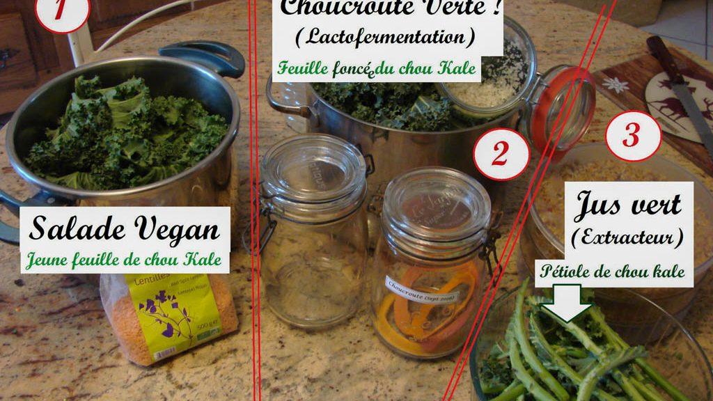 Recette après cueillette de chou Kale