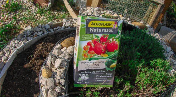 Test : Engrais longue durée Tomates courgettes & poivrons – Algoflash Naturasol – DZprod Jardin