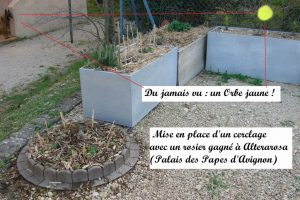 DZprod jardin de Quartier 15 mars 2017