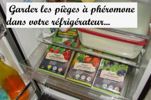 Garder les pièges à phéromone au réfrigérateur