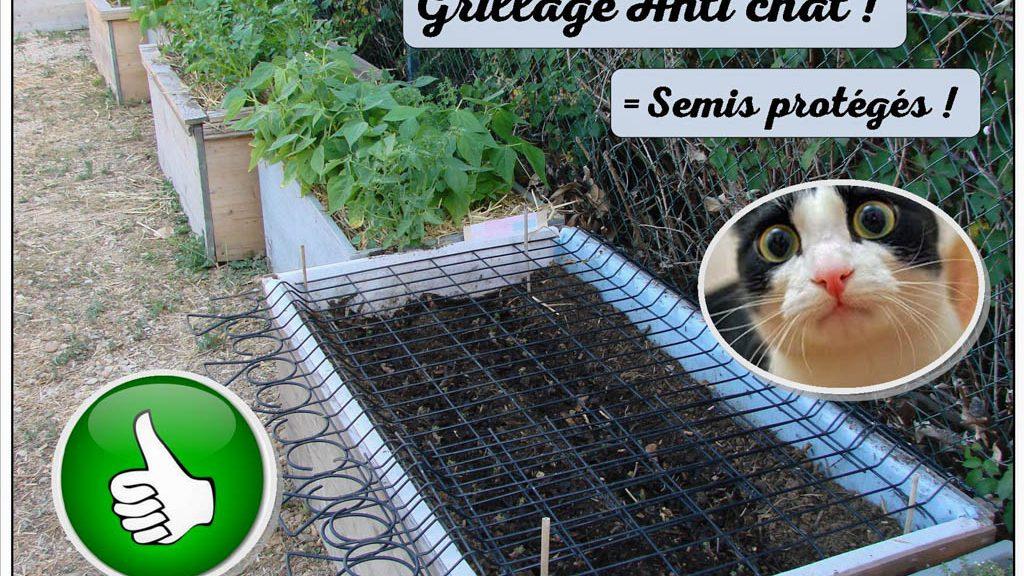 grillage anti chat pour la protection des semis
