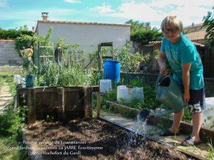 Jules semis haricot Soissons à écosser - bande B Loucascarelet - 10-05-2018