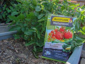 Algoflash Naturasol - Engrais longue durée Tomates Courgettes Poivrons - dzprod Jardin
