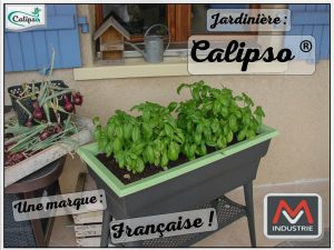 Jardinière calipso de chez MV Industrie pour du basilic et des aromatiques tout l'été !