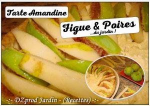 Tarte Amandine figues et poires du jardin - DZprod Jardin - 14 Aôut 2017